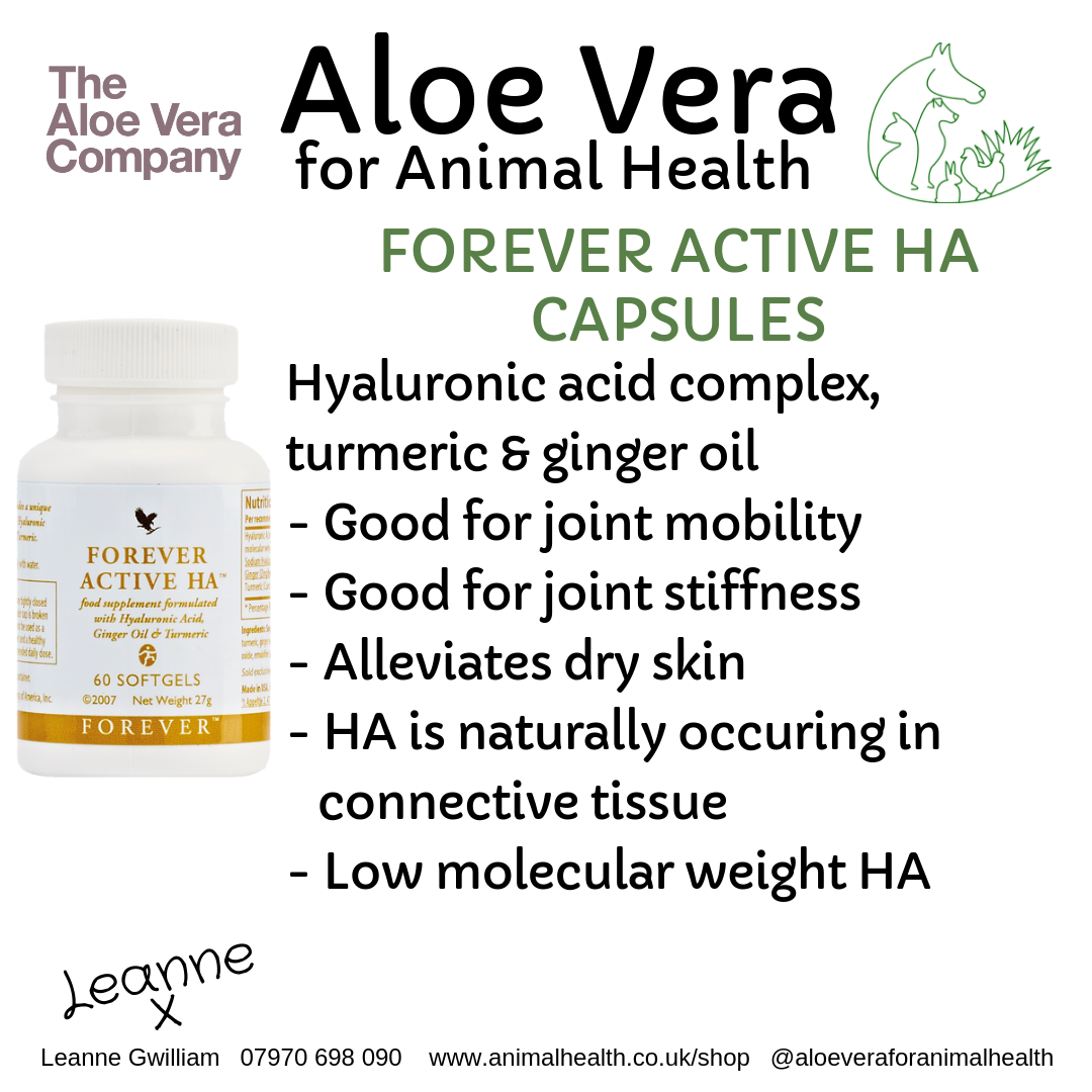 aloe_ha_active_hydrochloric_acid_joint_support_animals.png