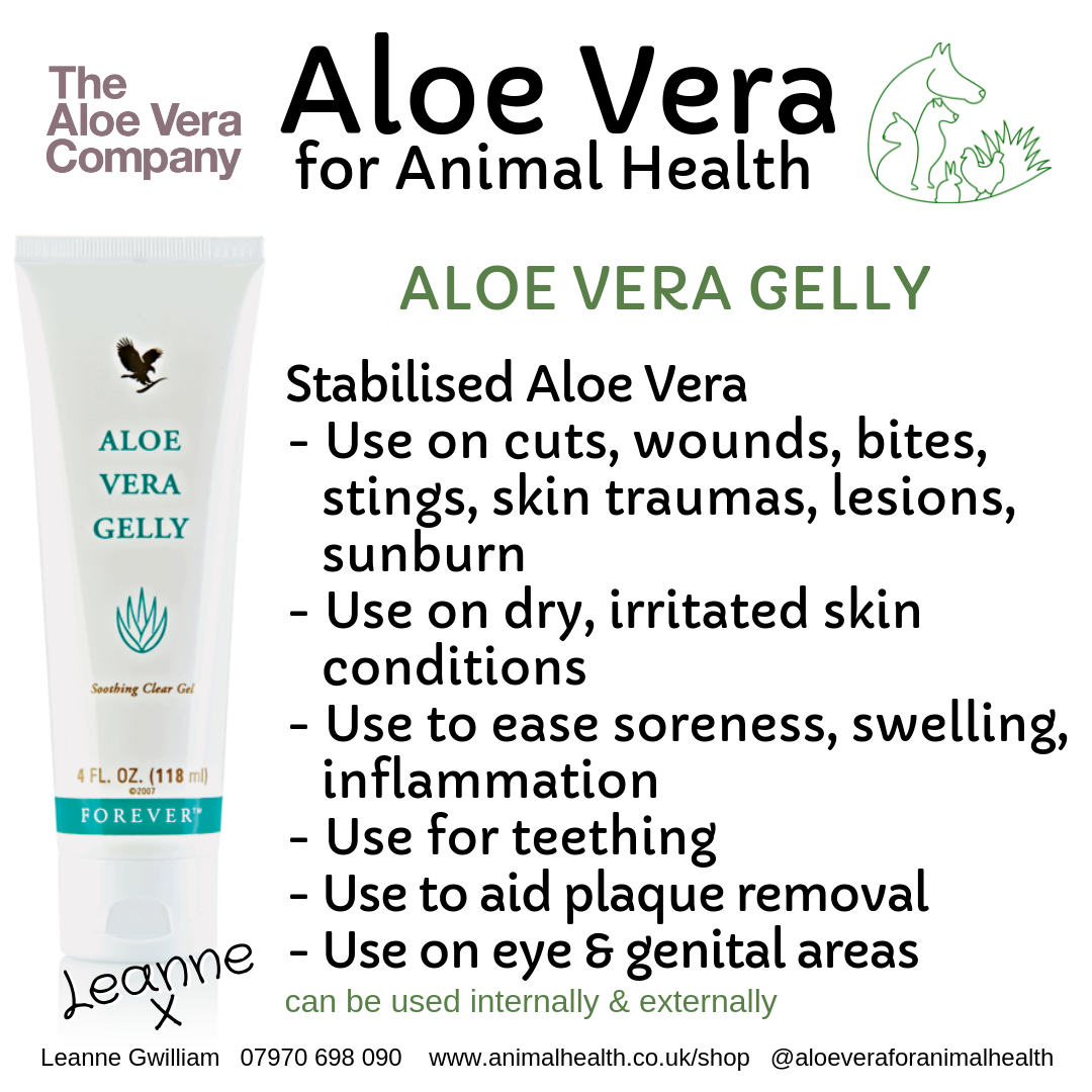 aloe_vera_gel_wound_skin_repair_damage_penetrate.png
