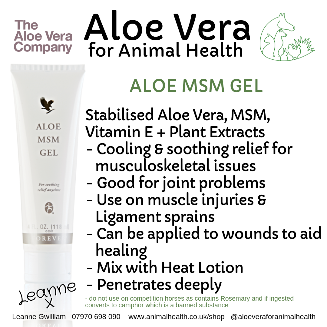 aloe_vera_msm_muscle_joint_soothe_injury_wound_repair.png