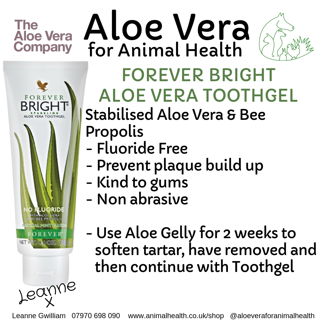aloe_vera_tooth_paste_gel_mint_plaque.png